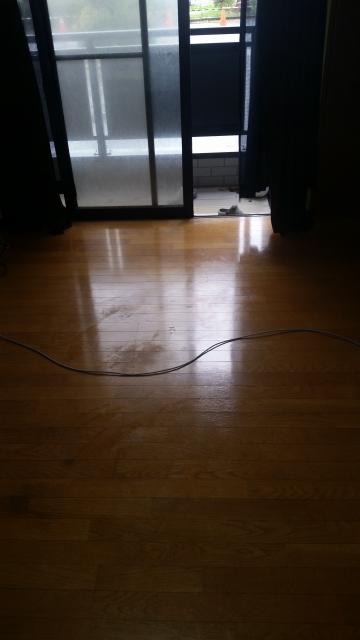 新潟県三条市/アパートゴミ屋敷かたづけ